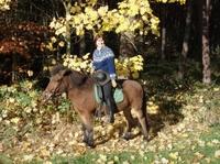 Ich gönn mir was im Herbst:  Urlaubsideen für des Reiters schönste Jahreszeit