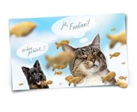 Mehr Komfort für Haustierbesitzer - foodinni, der neue Online-Shop