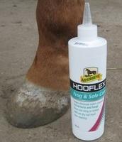 Produkttest auf Mit-Pferden-reisen.de: Hooflex Frog and Sole Care