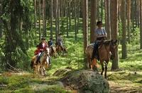 Trails und Reiterferien in traumhafter Landschaft  Naturerlebnis Värmland / Schweden