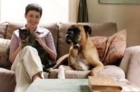 Haustierhaltung: Ohne Haftpflicht drohen Tierhaltern hohe Kosten