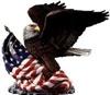 USAinvest24 Inc&Co.KG informiert zum Eigentumserwerbs von Grundstücken i.d. USA