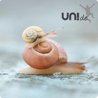 Zeit verstehen - eine neue Rubrik auf UNI.DE