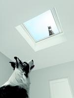 Neue Perspektiven mit Fenstern im Flachdach