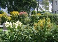 Offene Gärten - Empfehlung für Kunst- und Naturliebhaber