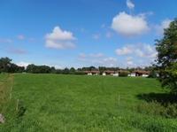Zugvogeltage im Oktober in Sehestedt