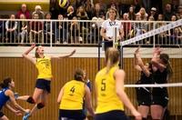 DSHS SnowTrex Köln landet gegen Bremen den ersten Heimsieg