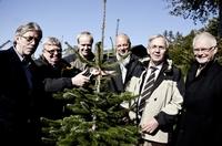 »Sauerland Initiativ« stellt Gütesiegel für Weihnachtsbäume vor