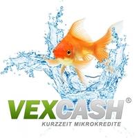 Effizienz als Trend - VEXCASH freut sich über 25.000 Kunden