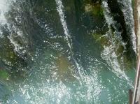 Seminarreihe: Europäischer Gewässerschutz