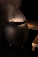 Saunaofen für gewerbliche oder private Nutzung