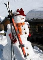 Skier, Schnee und Sonne satt