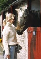 Mein Haus, mein Pferd:  Neue Ferienhausangebote bei Reitferienvermittlung Katja van Leeuwen