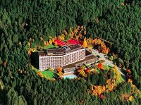 Mystisch und romantisch  ein schöner Harz Urlaub bietet beides