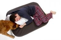 Neuer Memory Foam Hundeshop von DoggyBed & CatBed online!