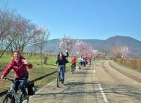 E-Bike-Radtouren im Frühling - ein individuelles Weihnachtsgeschenk
