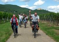 genussradeln-pfalz Programm 2013 - mit E-Bikes die Pfalz entdecken
