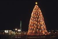 Washington DC: Vorm Weißen Haus gehen die Lichter an
