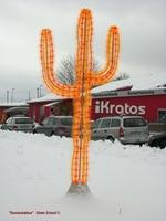 Der Sonnenkaktus, ein Symbol für Sonne und Naturkraft