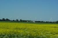 Windenergie und Flächennutzungsplan - Ausgestaltung der Energiewende auf lokaler Ebene
