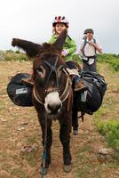 7 Tipps für eine Eselwanderung mit Kindern