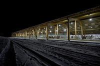 LED-Beleuchtung für Kuhstall und Melkstand