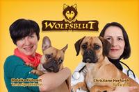 Kostenlose-Tierarztsprechstunde bei Wolfsblut und Co.