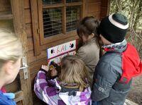 BDT-Tierschutzexperten besuchen im Sommer nordrhein-westfälische Schulen