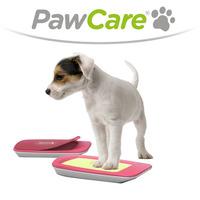 Mit PawCare gegen Hundeallergien und saisonale Pfotenprobleme