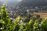 Ahr-Urlaub. Weingut Max Schell in Rech öffnet seine Tore für Feriengäste