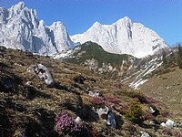 Romantische Tage im Herzen Tirols: Urlaub im Hotel Andreas Hofer in Kufstein