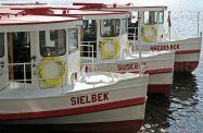 Hamburger Sprachschule geht Alsterschippern