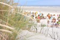 """Kinderuniversität zum """"Klimawandel"""" auf Juist vom 04. Juli bis 29. August 2013"""