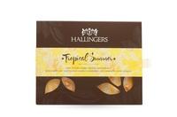 Der Zauber des Sommers: Edle leichte Saisonkreationen bei Hallingers Schokoladen Manufaktur