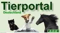 Tierärzte finden, Hundeschulen suchen: Portal für Dienstleister rund ums Haustier auf einen Klick