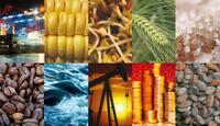 CashReport: Die erste internationale Rohstoff Messe startet im Jahre 2014 in der Schweiz.