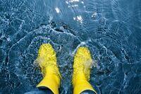 Nach der Flut: Jetzt muss alles schnell wieder trocken werden