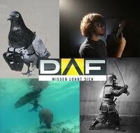 Die DAF-Highlights vom 26. bis 31. August 2013