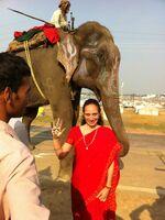 showimage Spirituelle Kraftreise nach Indien