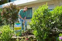 Mit der richtigen Erde zu gesunden Gartenpflanzen