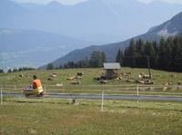 Wasser, Wandern und Genuss im Südwesten Kärntens