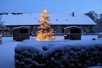 Im Saarland kommt man in Weihnachtsstimmung