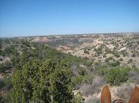 """Pionier-Tradition, Palo Duro Canyon, Quarter Horses und der Kampf """"Mann gegen Steak"""""""