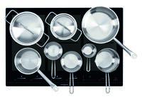area 30 Löhne: ORANIER Küchentechnik - Flächen-Induktion, ganz nach Maß: Maxi, medium oder als Domino