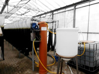 Energiestrategen GmbH: Algenproduktion im geschlossenen System