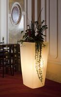 Stilvoll Haus und Garten verzaubern - mit weihnachtlichem Glanz