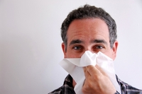 Die besten Rezepte gegen Nasenbluten