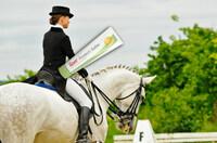 Mensch und Pferd - ein perfektes System!