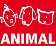 Rund um den Hund: BHV gestaltet Rahmenprogramm auf der Messe ANIMAL