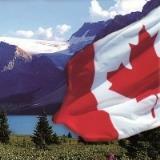 Schüleraustausch in Kanada: Schulbezirke kennen lernen und Teilstipendium bekommen